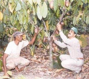 Inversionista cree dominicanos son vagos