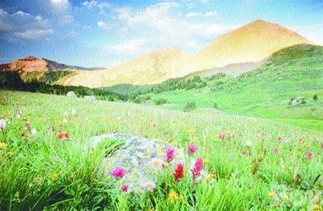 http://hoy.com.do/image/article/53/460x390/0/F4C1B935-0843-41B2-8111-0D914C8AB6D9.jpeg