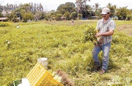 Ejecutarán proyectos formación agro