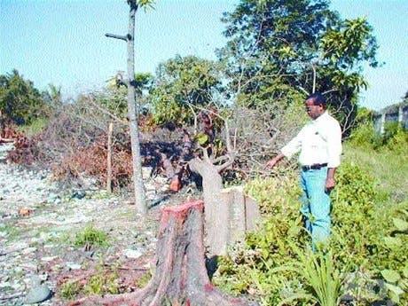 http://hoy.com.do/image/article/332/460x390/0/3D642974-A0C3-4A79-997C-DE9499ABFCD8.jpeg