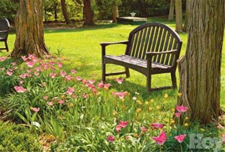 ¿Cómo crear el jardín ideal?