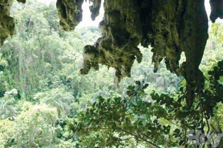 """Bayaguana y sus """"ventanas al paraíso""""<BR>de la selva verde y circundante"""