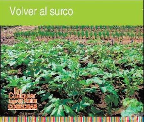 http://hoy.com.do/image/article/335/460x390/0/7A403CFA-A78A-498D-8876-9C4B4FA47262.jpeg