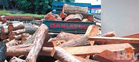 Los delitos ambientales no cesan en provincias del Norte