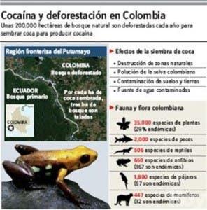 http://hoy.com.do/image/article/475/460x390/0/DD7FB54C-4024-4C04-B380-91EE463E1444.jpeg