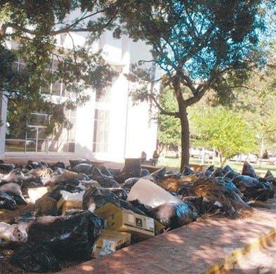 <P>Basureros y abandono en Plaza de la Cultura</P>