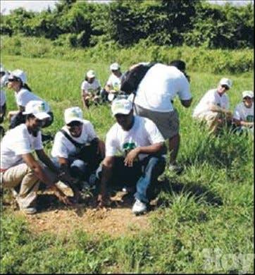 <P>Inician jornada reforestación en la zona fronteriza</P>