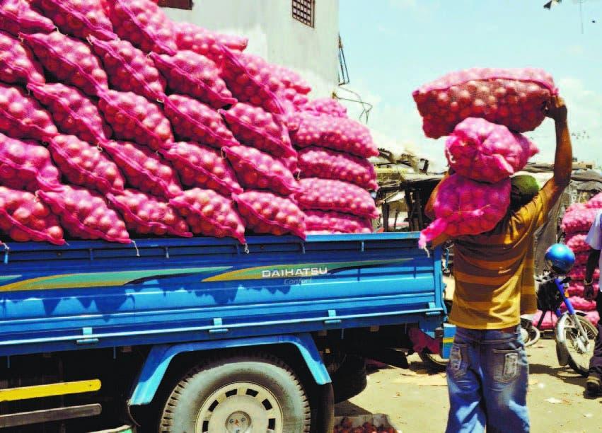 Comerciantes piden asignación 50% de importaciones de cebolla roja
