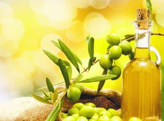 Aceite de oliva, archivo