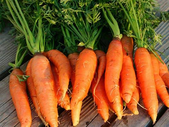 Precios mayoría vegetales siguen estables, otros bajan