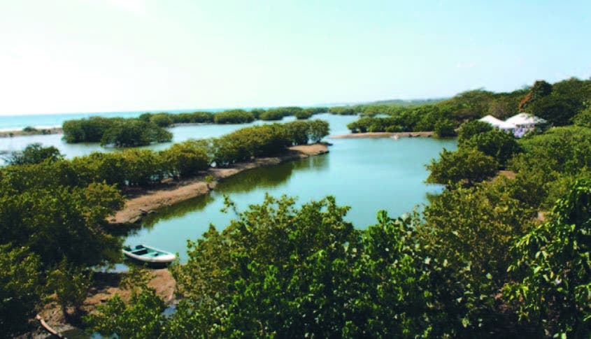 El país tiene la mayor diversidad de la región para ofertar este tipo de turismo ecológico