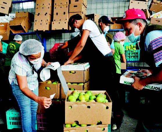 La agroindustria tiene buenas oportunidades en América Latina