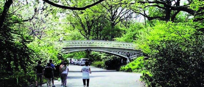 El Central Park es un lugar con una gran vegetación, donde se respira aire fresco y puro