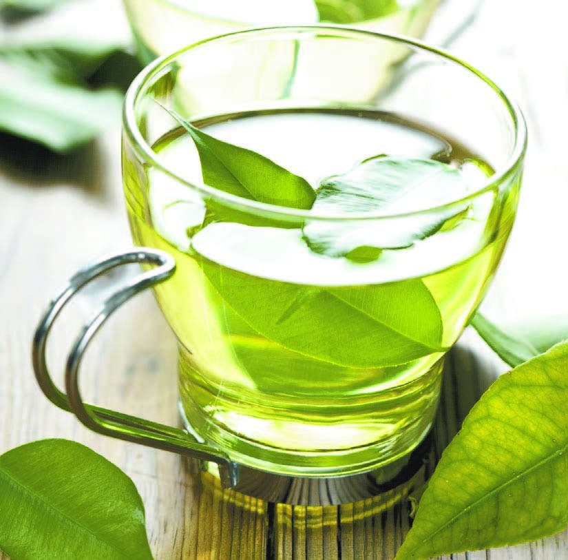 Los científicos puntualizan que la alta dosis de té verde administrada a los sujetos (correspondiente a varias tazas) no se corresponde con un consumo estándar diario, con lo que los efectos potenciales de la infusión sobre el organismo deberían ser menos pronunciados.