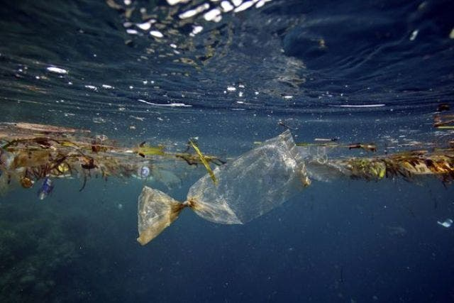ocean-trash-malaysian-airlines-1_78393_600x450