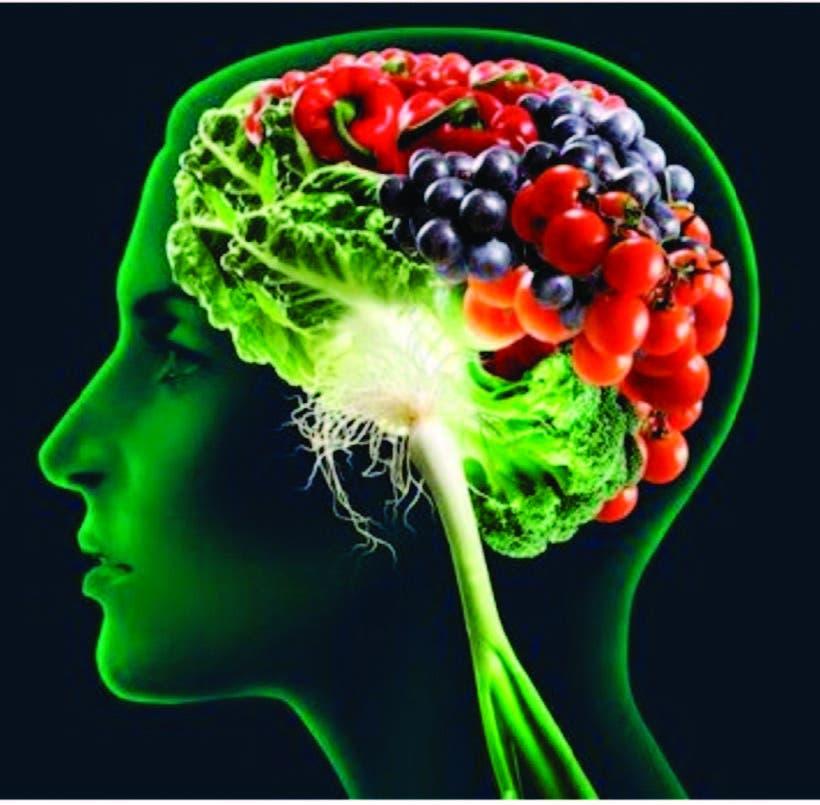 El cerebro necesita nutrientes para realizar sus funciones.