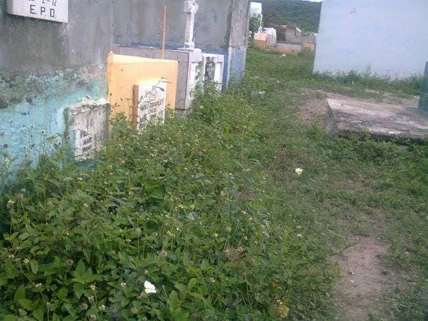Denuncian cementerio de Barahona parece una «selva» por tanta basura y maleza