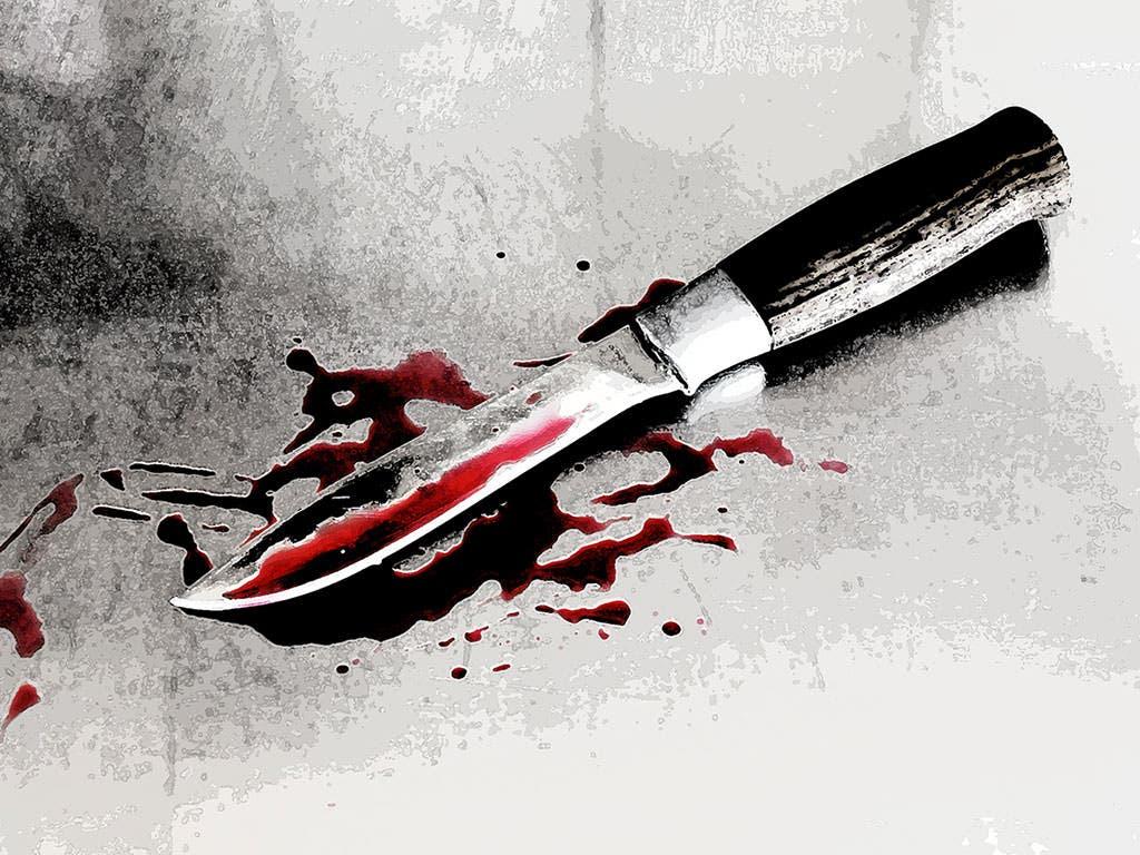 Resultado de imagen para Joven mata a su hermano al sorprenderlo golpeando a la madre de ambos en santiago