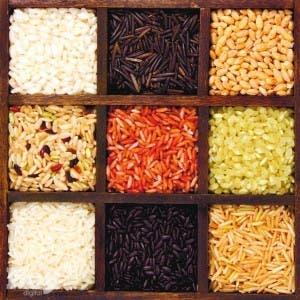 Las diversas variedades de arroz