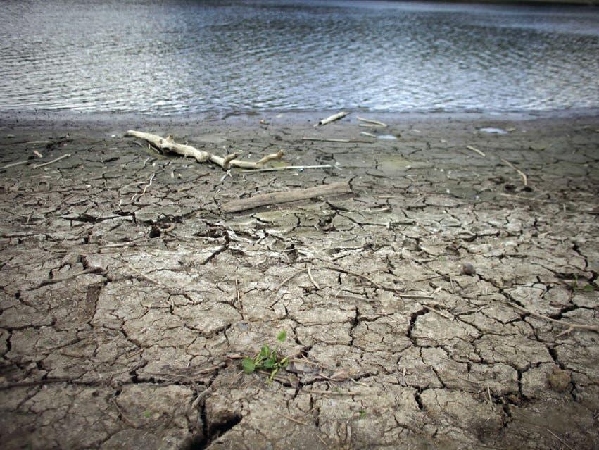 La sequía que desde hace meses sufre Puerto Rico afecta ya en distintos grados de intensidad al 83 % de su superficie y a una población, archivo