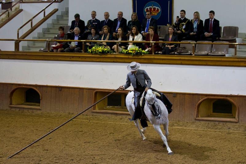 Los caballos y jinetes de la Real Escuela Andaluza de Arte Ecuestre cautivaron hoy, fuente externa