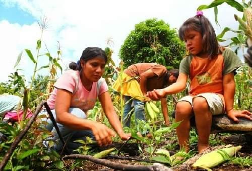 """""""requiere de medidas a mediano y largo plazo"""", dijo a Efe Xavier Fernández, representante del grupo ecologista Amigos de la Tierra de España."""