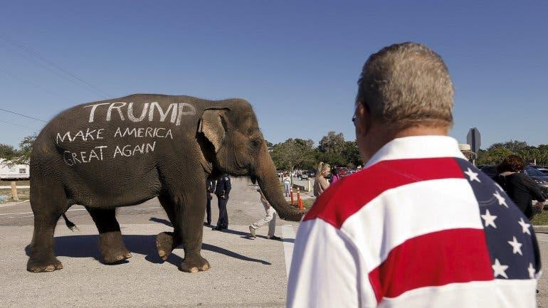 Trump elephan