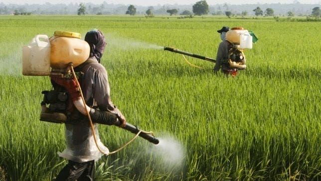 pesticida670xxx80