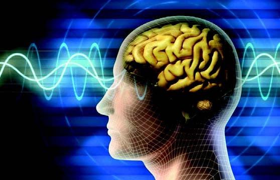 Científicos logran prevenir Alzheimer mediante inyección de gen en el cerebro