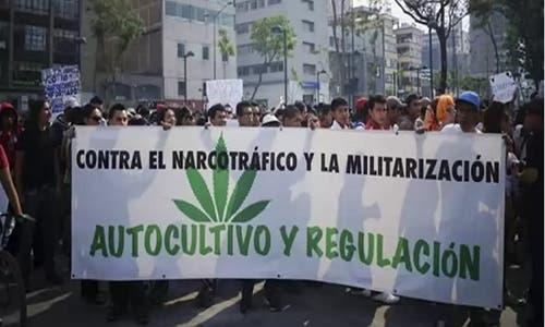 mexicodebatemarihuana