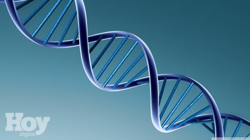 Por primera vez, el ADN combinado de tres personas produjo un bebé