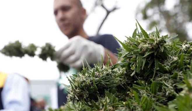 Puerto Rico empieza a aceptar solicitudes de pacientes que buscan marihuana