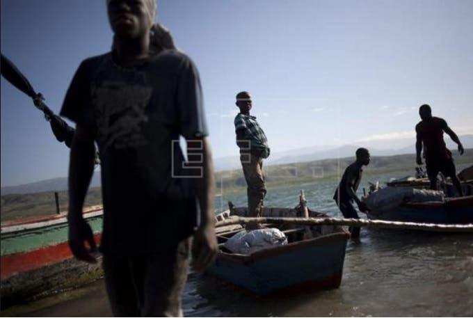 Documental sobre deforestación en R.Dominicana y Haití se exhibirá en TV