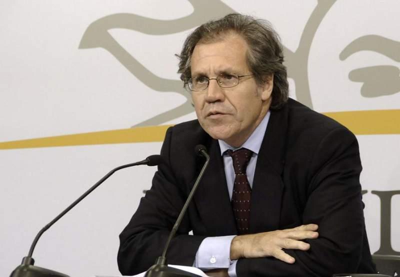Luis Almagro no será apoyado por su país si se postula a la reelección de la OEA