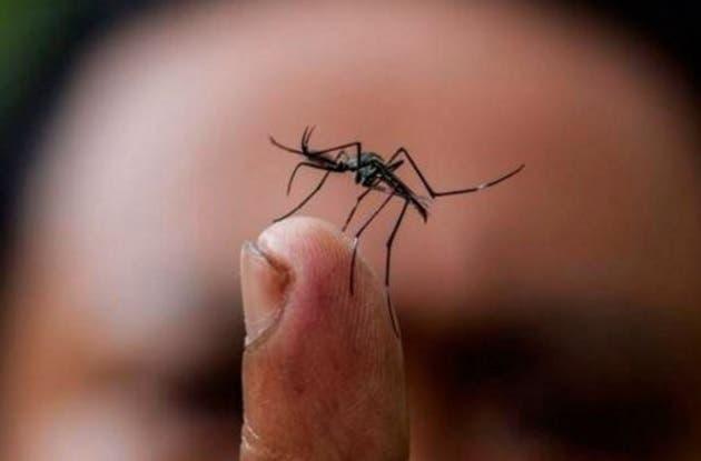 Zika síndrome