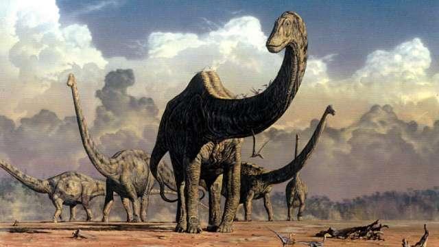 """Trelew, la ciudad argentina que """"resucitó"""" al dinosaurio más grande del mundo"""