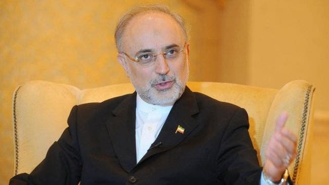 """Ali Akbar Salehi, responsable del proyecto """"programa nuclear iraní""""."""