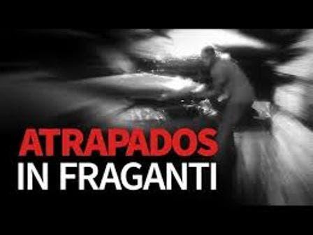 Video: Ladrones de baterías atrapados gracias a cámaras 911