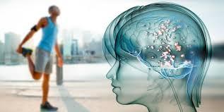 El cerebro del deportista es un 10% más rápido bajo presión, según un estudio