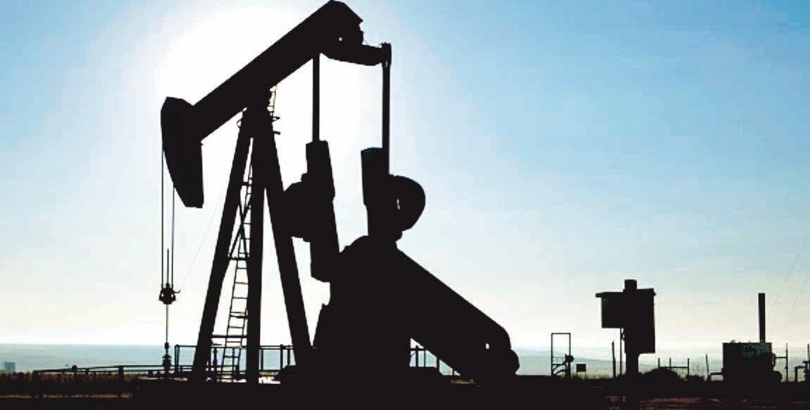 ANJE está preocupado por estimación oro y petróleo