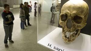 Los primeros humanos europeos tenían una dieta equilibrada y no usaban fuego
