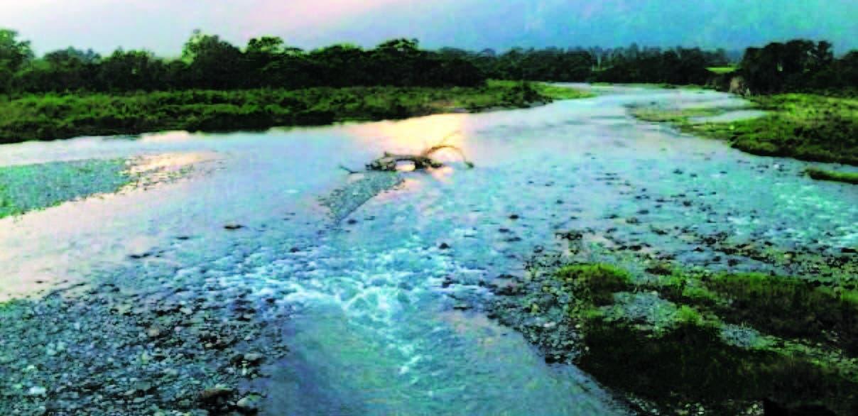Campesinos cuenca alta Yuna quieren aprovechar el bosque