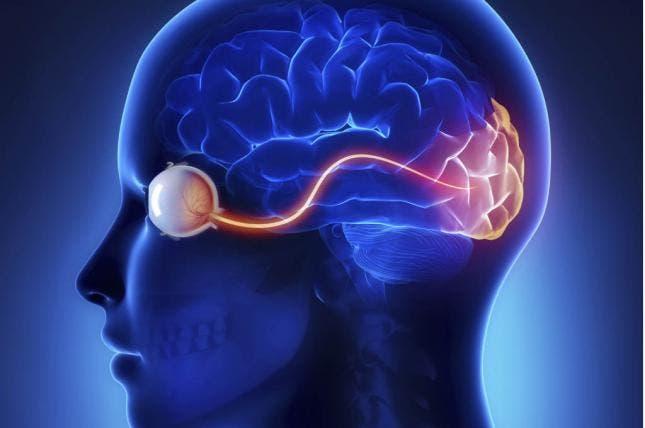 """¿Cómo el cerebro de personas ciegas puede """"reconfigurarse"""" para mejorar sentidos?"""