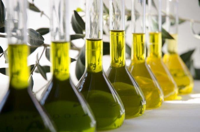 Aceite de oliva virgen clasificado según colores en la Almazara Experimental del Instituto de la Grasa. Foto: Victoria Muñoz/CSIC.