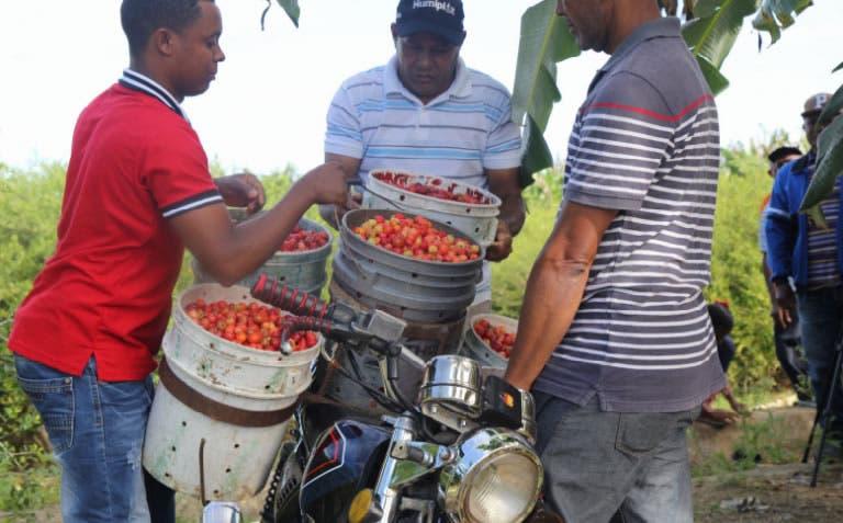 Los productores solicitaron a Medina maquinarias y equipos/Foto cortesía de PresidenciaRD