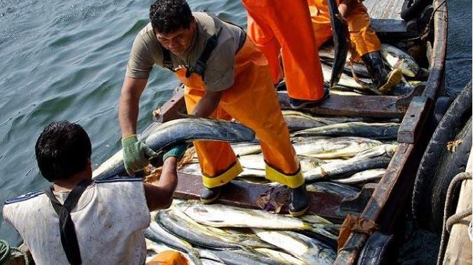 Una multa de US$11 millones mantiene 59 pescadores dominicanos detenidos en Jamaica