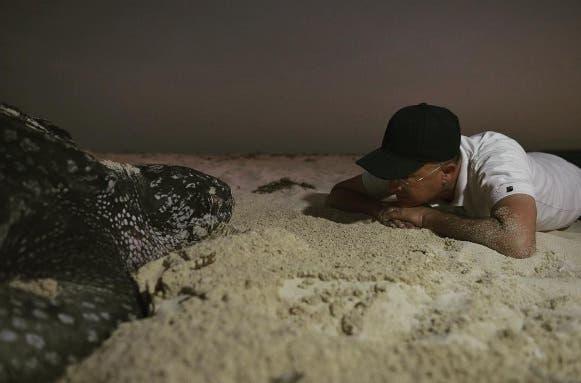 El diálogo entre Domínguez Brito y una tortuga
