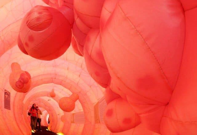 éplica de 30 metros de longitud de un intestino humano en Dresde (Alemania). EFE/Ralf Hirschberger.