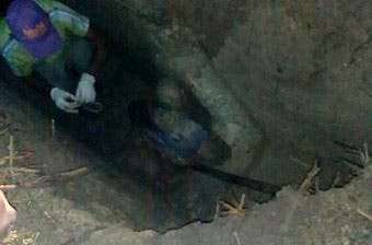 Dicen avanzan investigaciones sobre cadáveres hallados en fosa en El Seibo