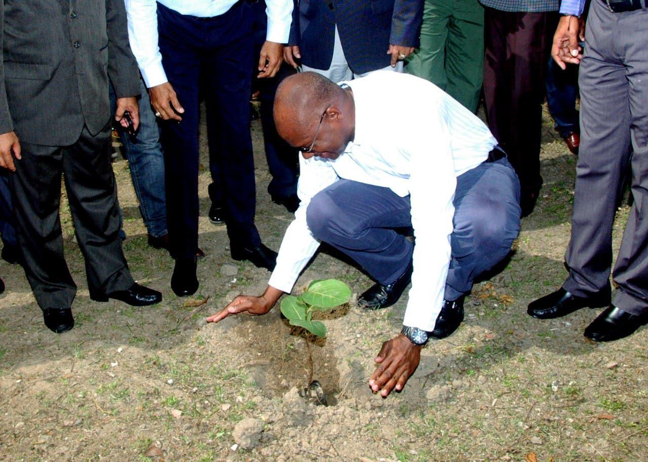 Alcalde Alfredo Martínez anuncia programa de arborización